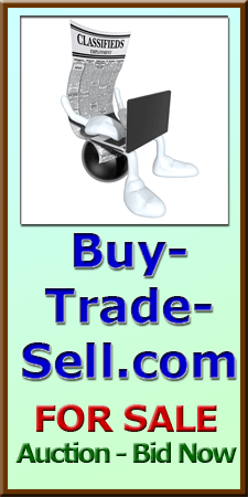 Bid on Buy-Trade-Sell.com